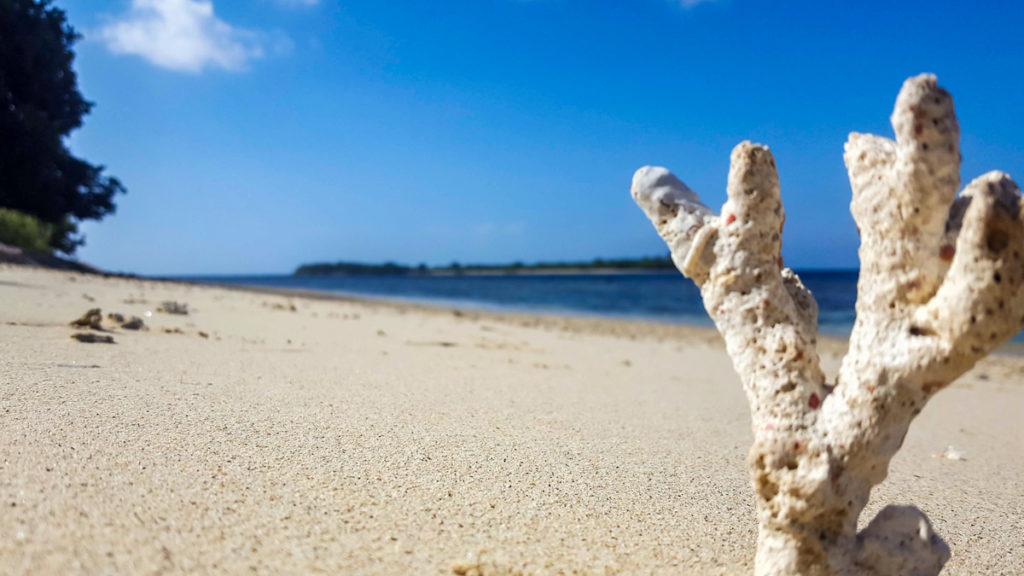 Gili-Layar-Beach